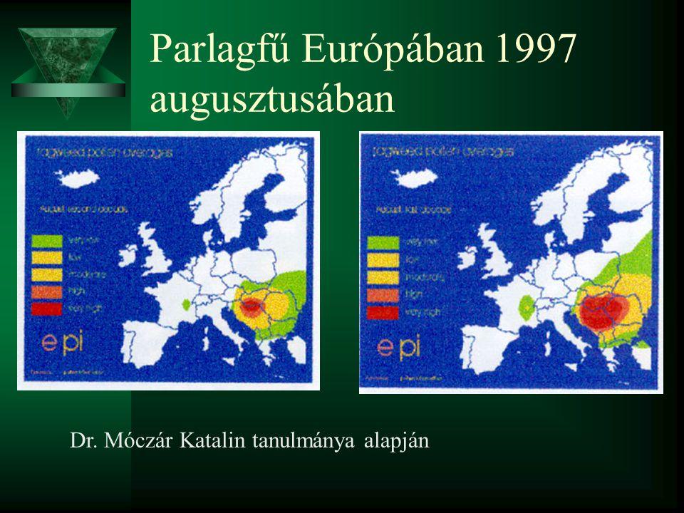 Parlagfű Európában 1997 augusztusában