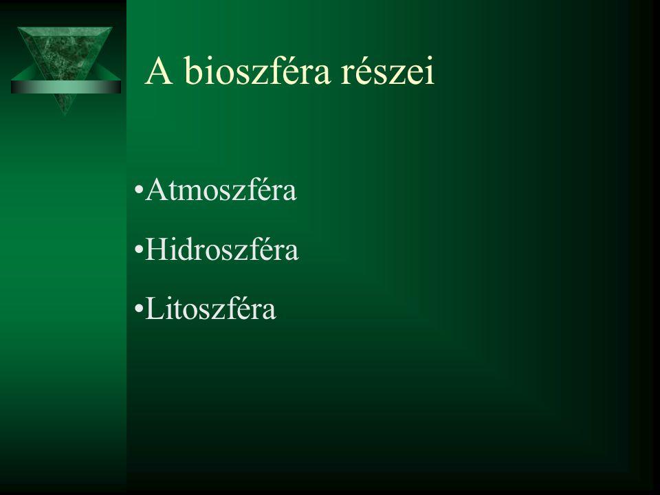 A bioszféra részei Atmoszféra Hidroszféra Litoszféra