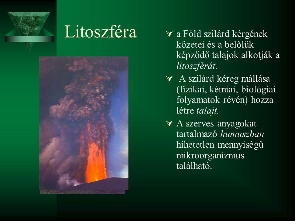 Litoszféra a Föld szilárd kérgének kőzetei és a belőlük képződő talajok alkotják a litoszférát.