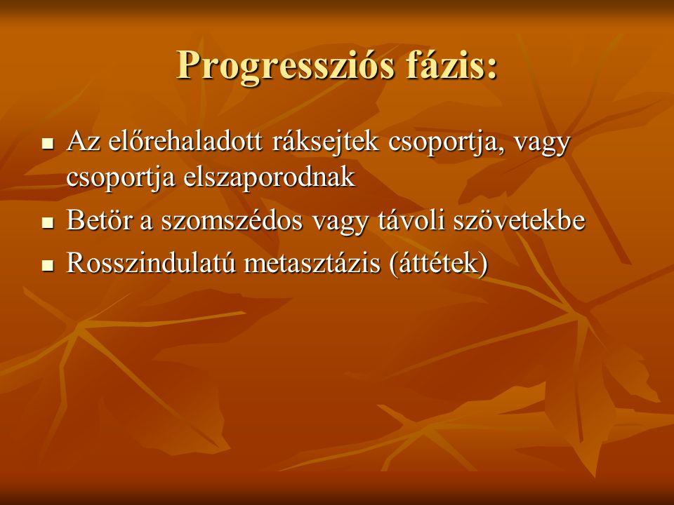 Progressziós fázis: Az előrehaladott ráksejtek csoportja, vagy csoportja elszaporodnak. Betör a szomszédos vagy távoli szövetekbe.