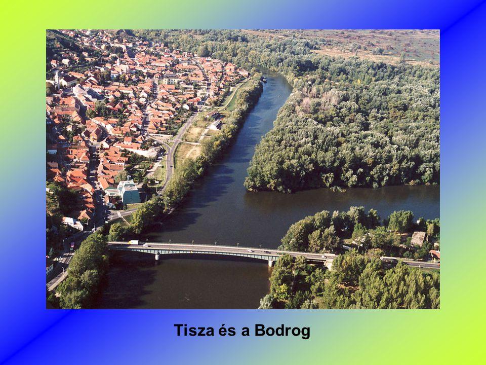 Tisza és a Bodrog