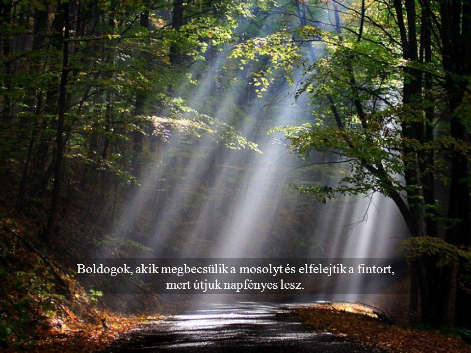 Boldogok, akik megbecsülik a mosolyt és elfelejtik a fintort, mert útjuk napfényes lesz.