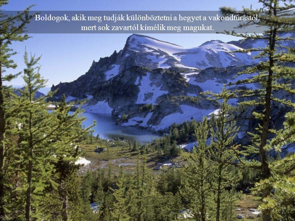 Boldogok, akik meg tudják különböztetni a hegyet a vakondtúrástól, mert sok zavartól kímélik meg magukat.
