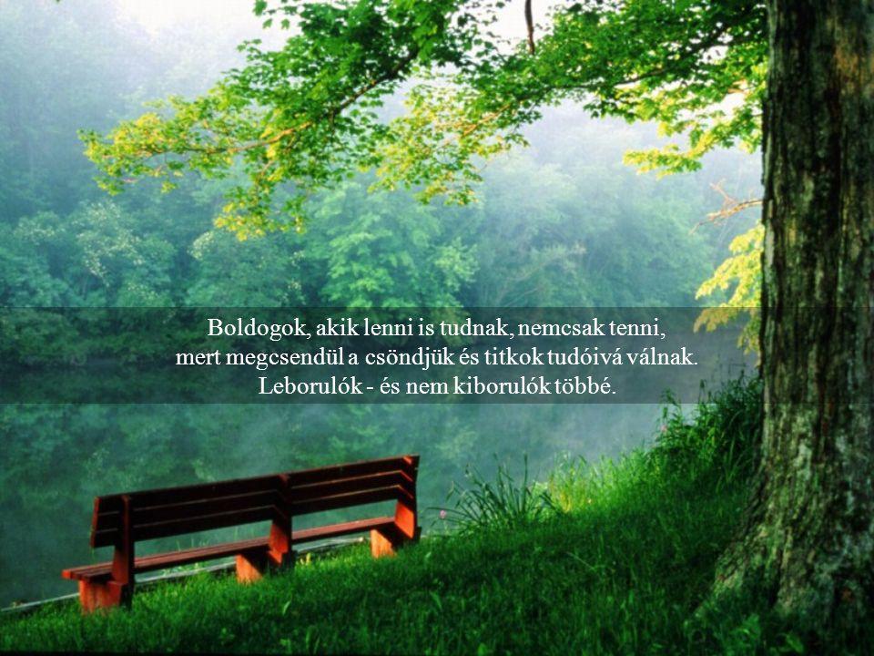 Boldogok, akik lenni is tudnak, nemcsak tenni, mert megcsendül a csöndjük és titkok tudóivá válnak.