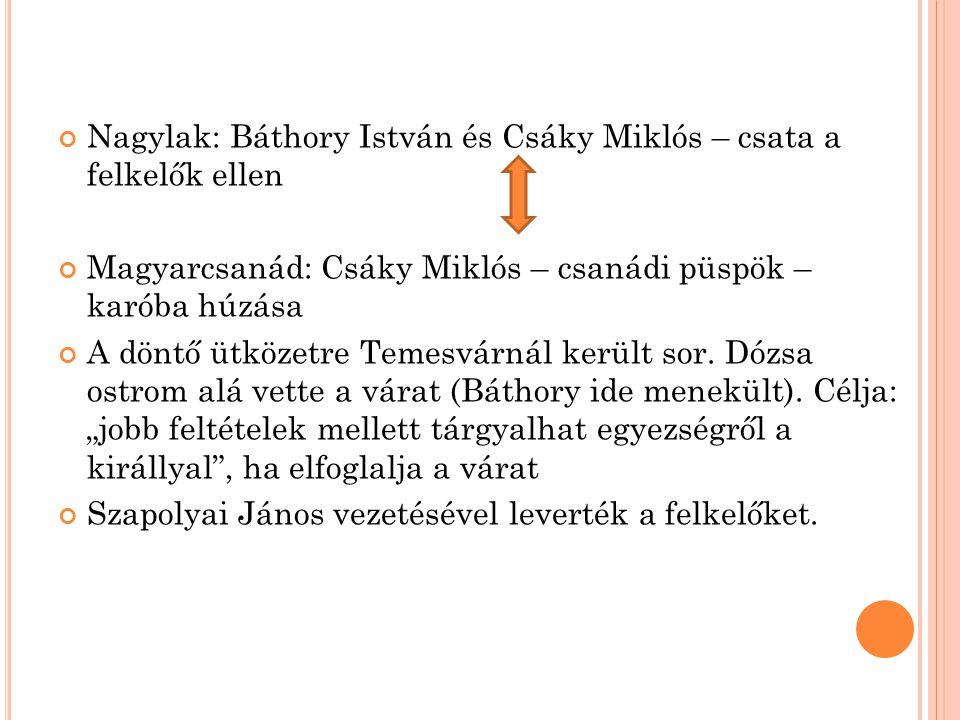 Nagylak: Báthory István és Csáky Miklós – csata a felkelők ellen