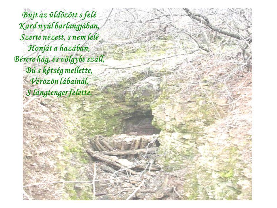 Bújt az üldözött s felé Kard nyúl barlangjában, Szerte nézett, s nem lelé Honját a hazában, Bércre hág, és völgybe száll, Bú s kétség mellette, Vérözön lábainál, S lángtenger felette.