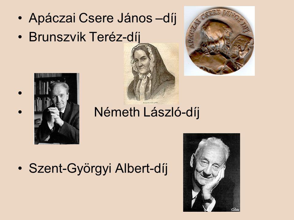 Apáczai Csere János –díj