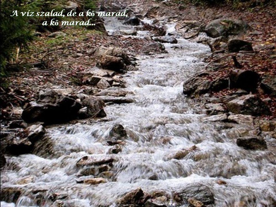 A víz szalad, de a kő marad,
