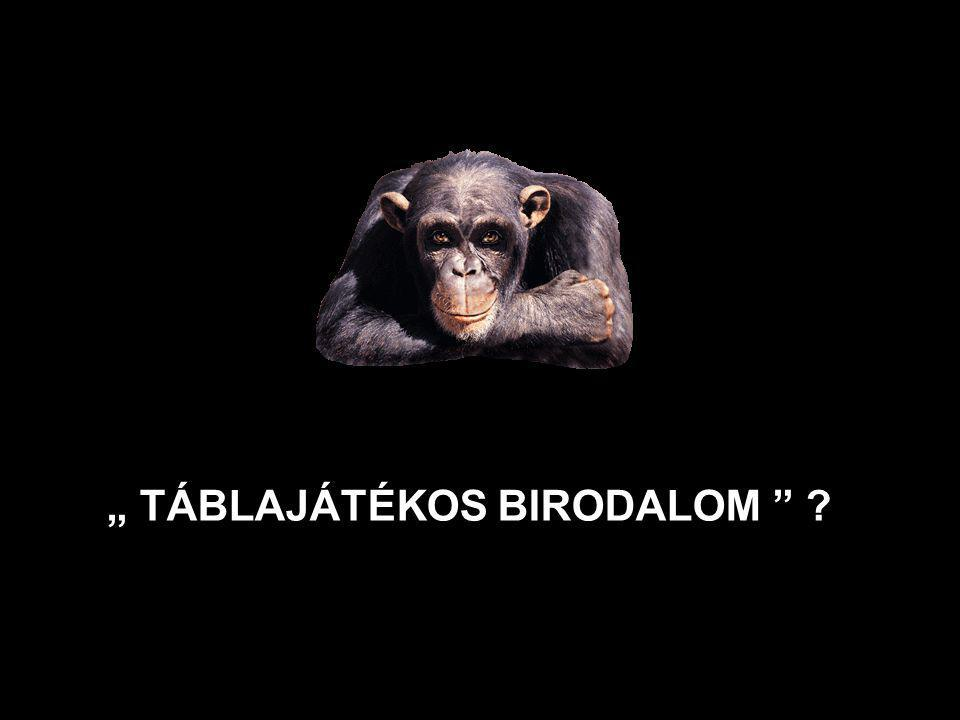""" TÁBLAJÁTÉKOS BIRODALOM"
