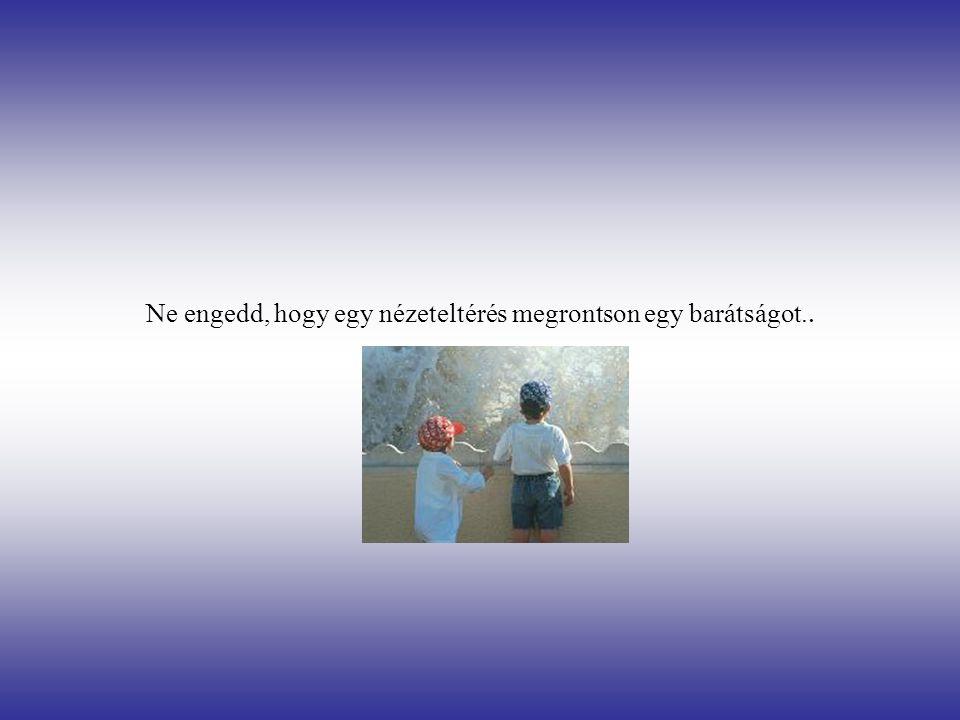 Ne engedd, hogy egy nézeteltérés megrontson egy barátságot..