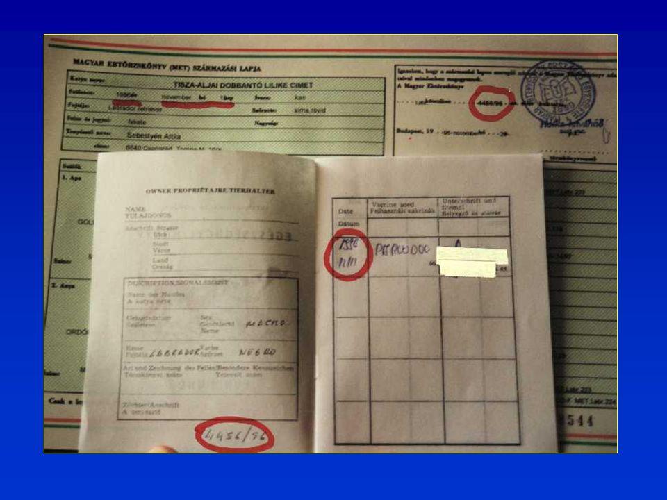 Egy kereskedő által exportált kutya származási lapja és a hozzá tartozó oltási igazolás.