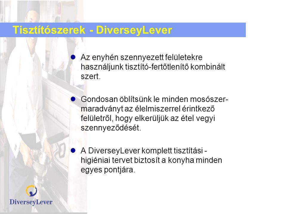 Tisztítószerek - DiverseyLever