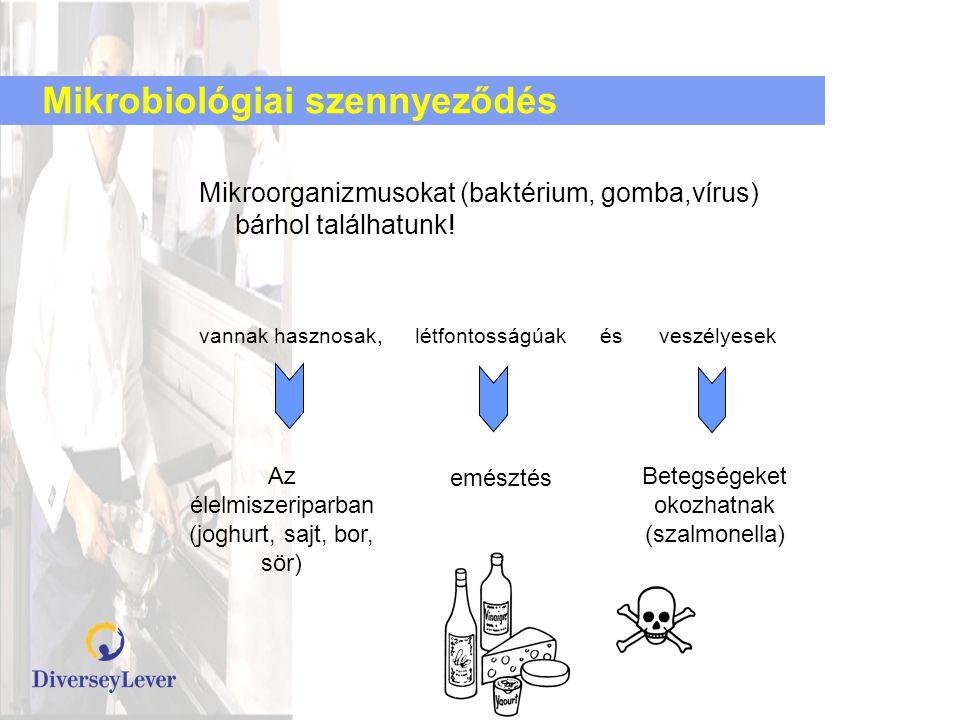 Mikrobiológiai szennyeződés