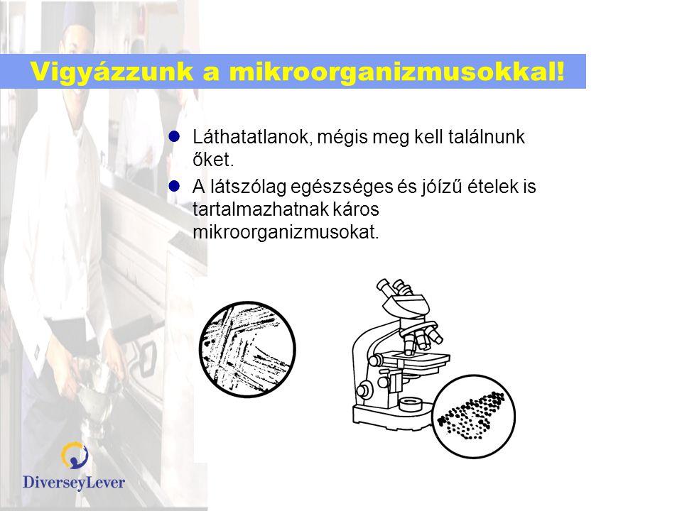 Vigyázzunk a mikroorganizmusokkal!