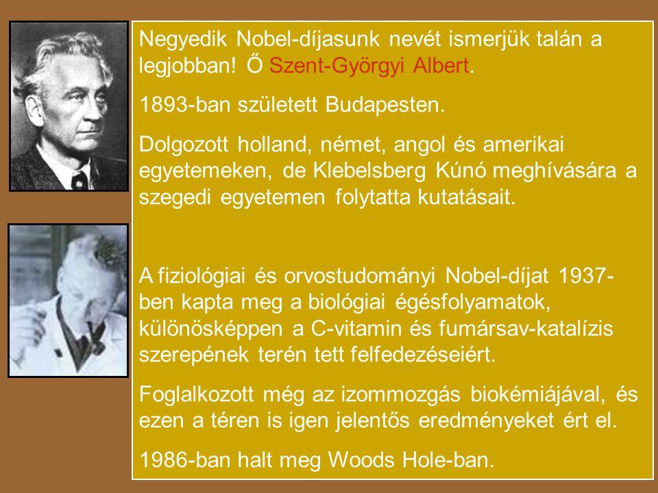 Negyedik Nobel-díjasunk nevét ismerjük talán a legjobban
