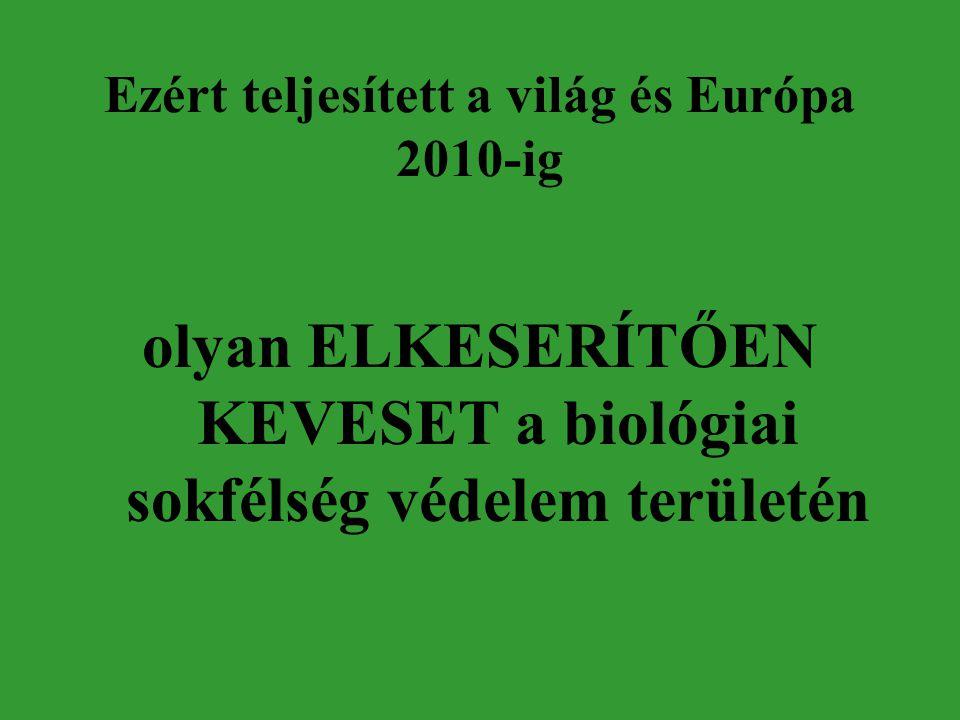 Ezért teljesített a világ és Európa 2010-ig