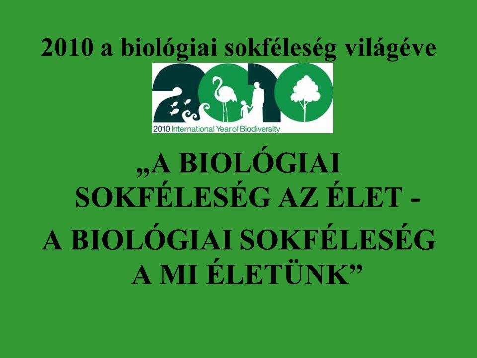 2010 a biológiai sokféleség világéve