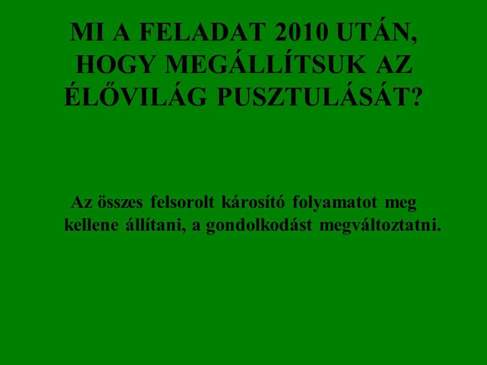 MI A FELADAT 2010 UTÁN, HOGY MEGÁLLÍTSUK AZ ÉLŐVILÁG PUSZTULÁSÁT