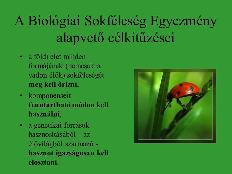 A Biológiai Sokféleség Egyezmény alapvető célkitűzései