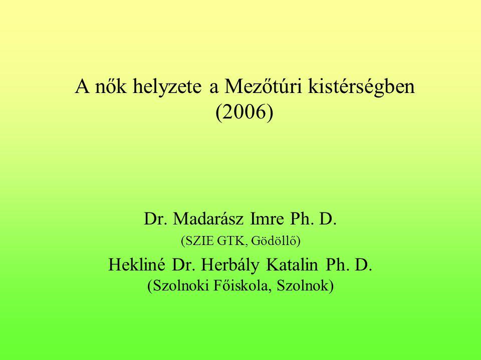 A nők helyzete a Mezőtúri kistérségben (2006)