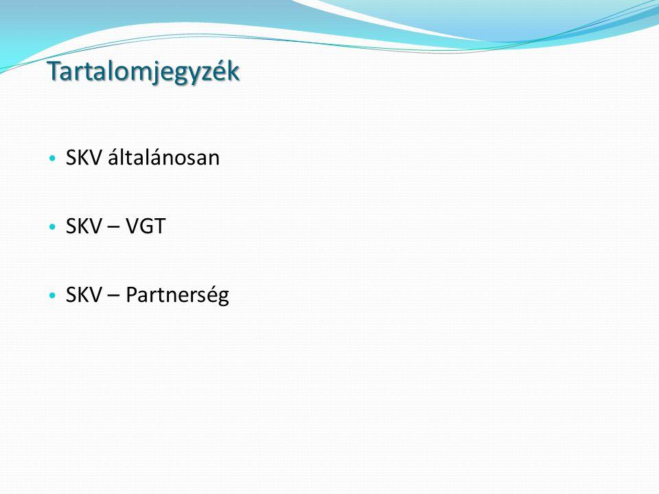 Tartalomjegyzék SKV általánosan SKV – VGT SKV – Partnerség