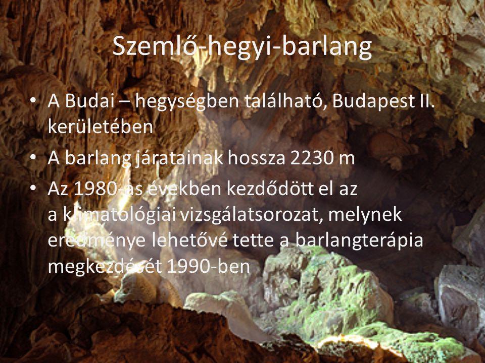 Szemlő-hegyi-barlang