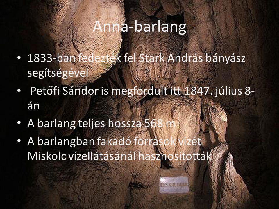 Anna-barlang 1833-ban fedezték fel Stark András bányász segítségével