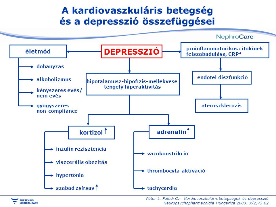 A kardiovaszkuláris betegség és a depresszió összefüggései