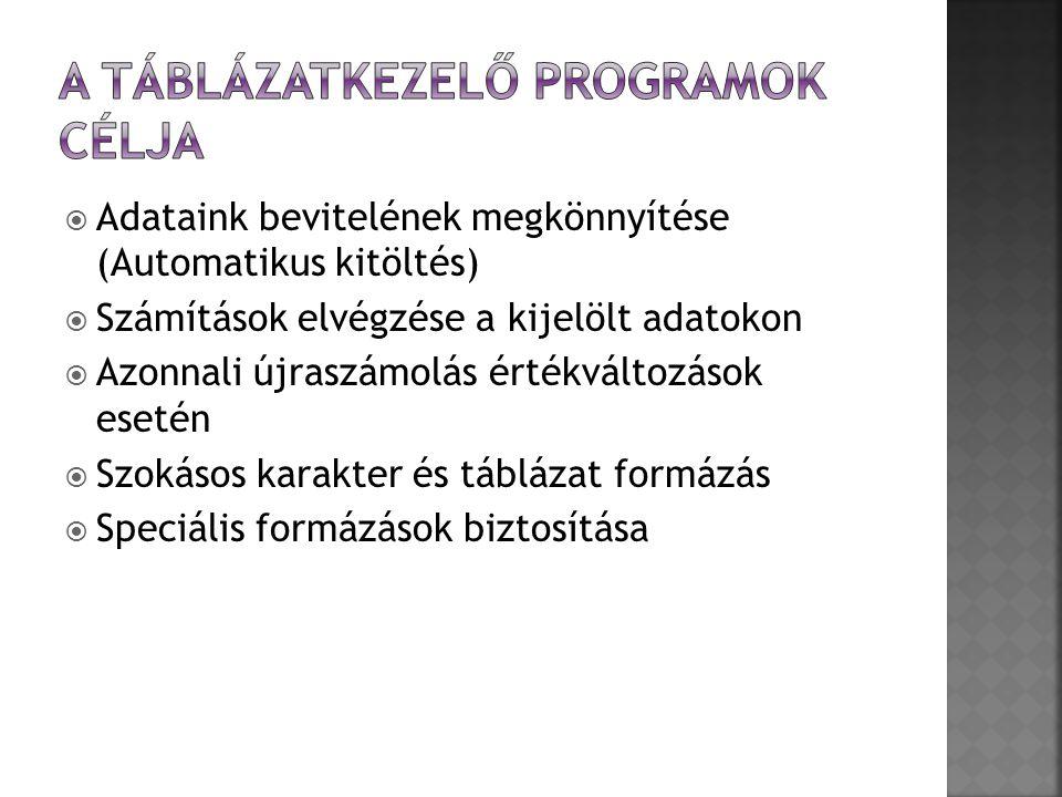 A táblázatkezelő programok célja