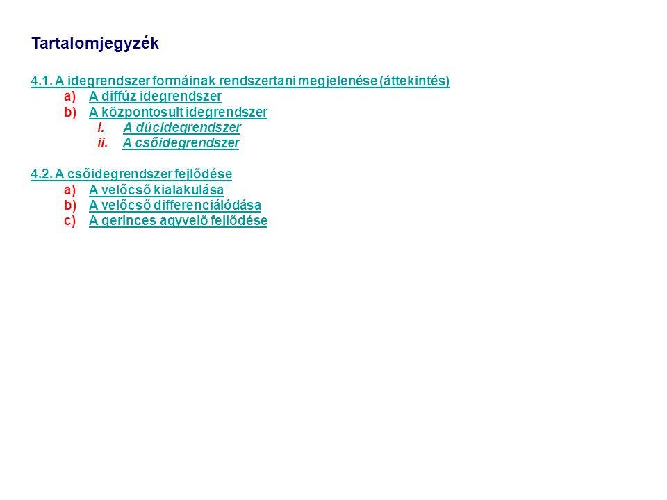 Tartalomjegyzék 4.1. A idegrendszer formáinak rendszertani megjelenése (áttekintés) A diffúz idegrendszer.