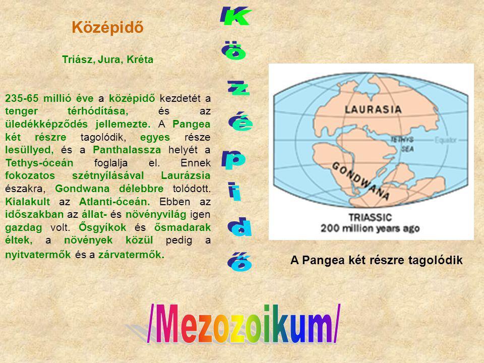 Középidő Középidő A Pangea két részre tagolódik /Mezozoikum/