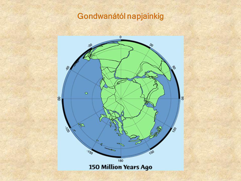Gondwanától napjainkig