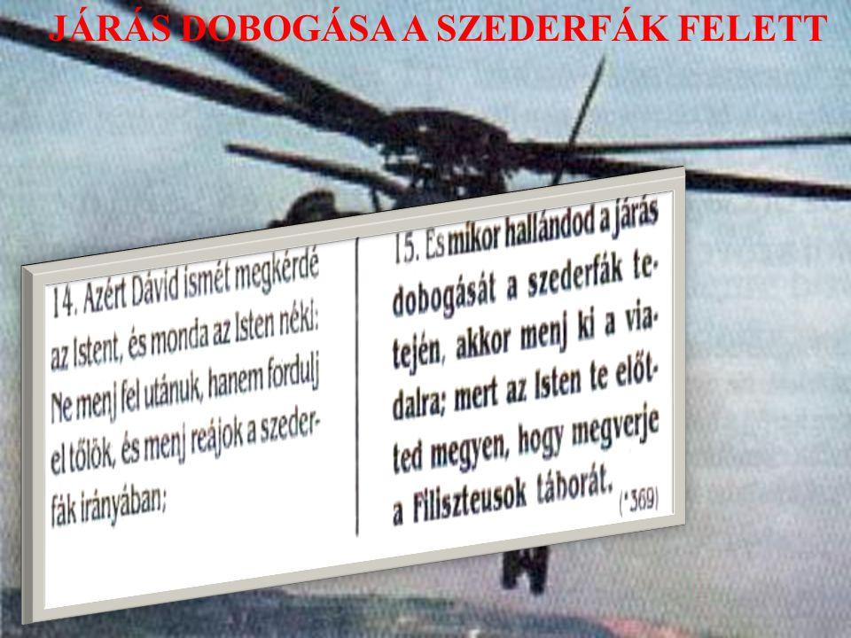 JÁRÁS DOBOGÁSA A SZEDERFÁK FELETT