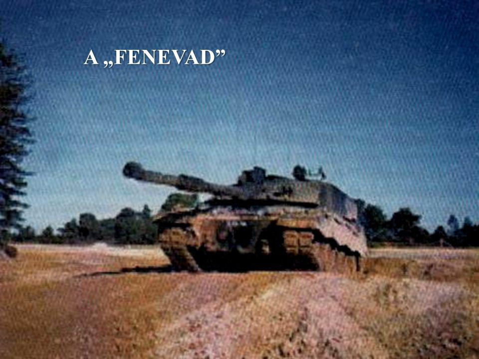 "A ""FENEVAD"