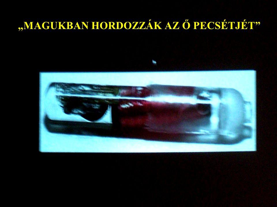 """""""MAGUKBAN HORDOZZÁK AZ Ő PECSÉTJÉT"""