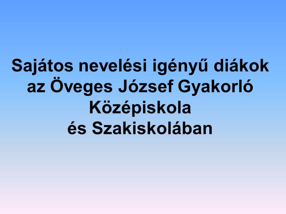 Sajátos nevelési igényű diákok az Öveges József Gyakorló Középiskola és Szakiskolában