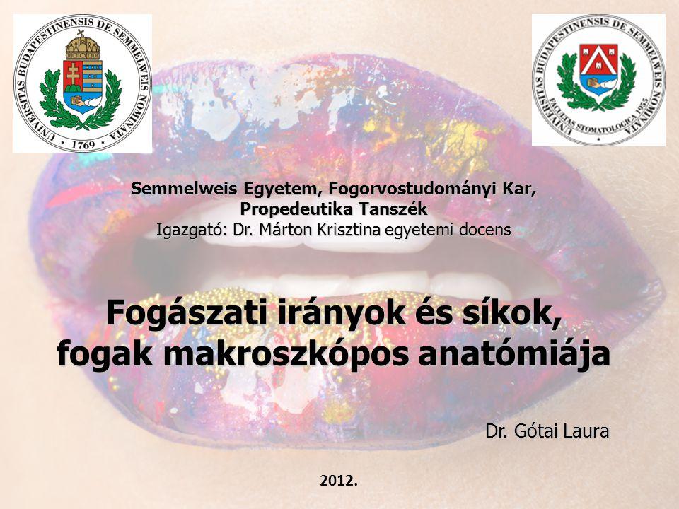 Semmelweis Egyetem, Fogorvostudományi Kar, Propedeutika Tanszék Igazgató: Dr. Márton Krisztina egyetemi docens Fogászati irányok és síkok, fogak makroszkópos anatómiája