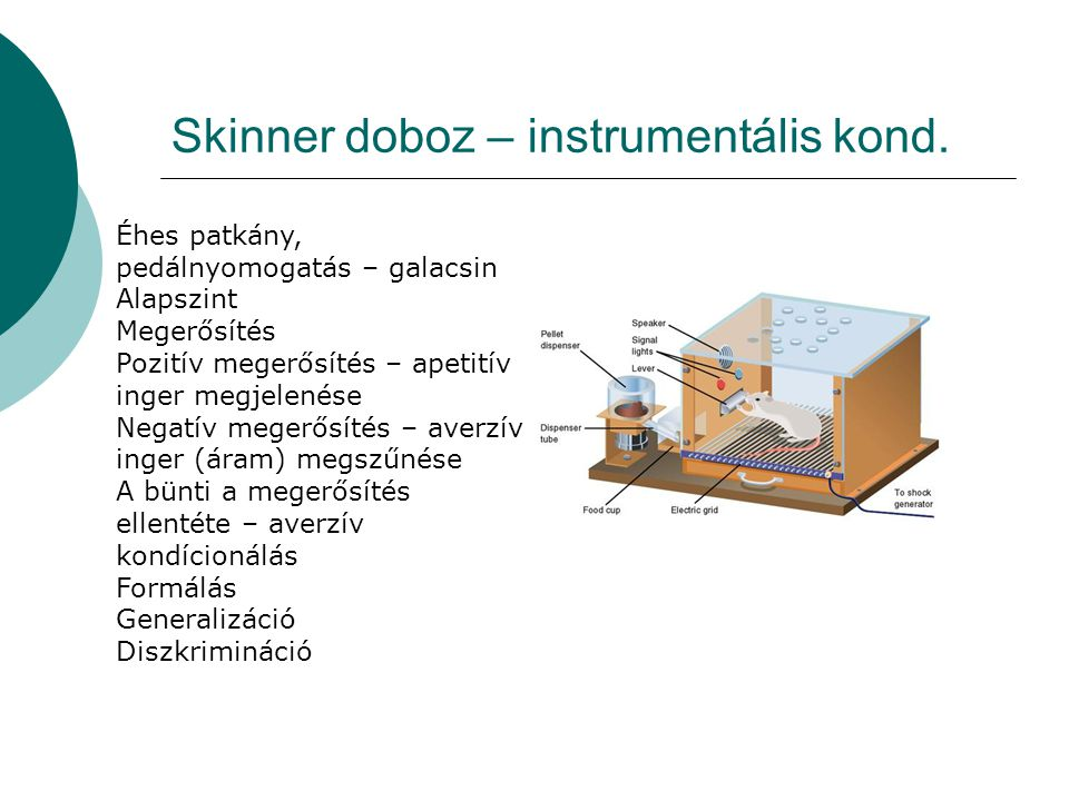 Skinner doboz – instrumentális kond.