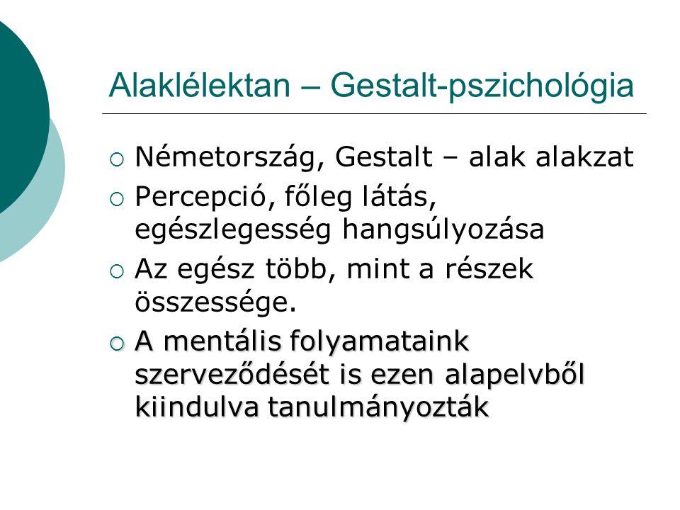 Alaklélektan – Gestalt-pszichológia