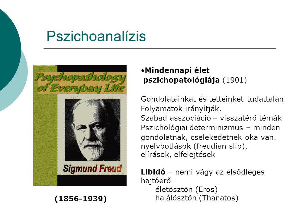 Pszichoanalízis Mindennapi élet pszichopatológiája (1901)