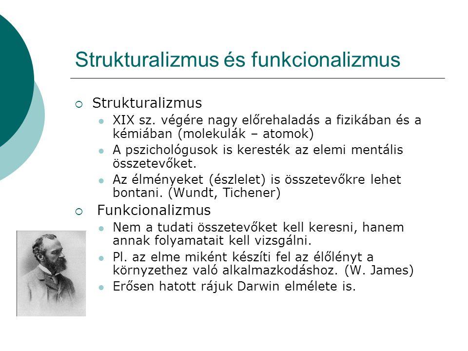 Strukturalizmus és funkcionalizmus
