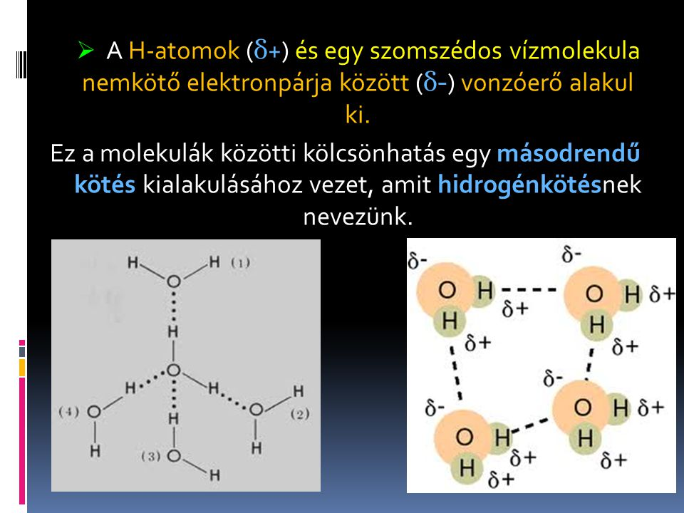 A H-atomok (δ+) és egy szomszédos vízmolekula nemkötő elektronpárja között (δ-) vonzóerő alakul ki.