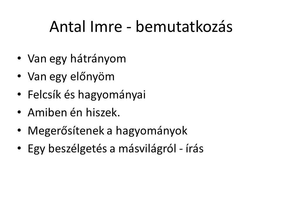 Antal Imre - bemutatkozás