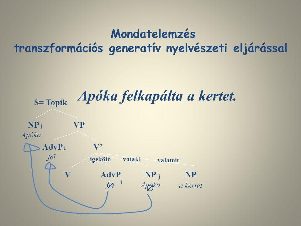 transzformációs generatív nyelvészeti eljárással