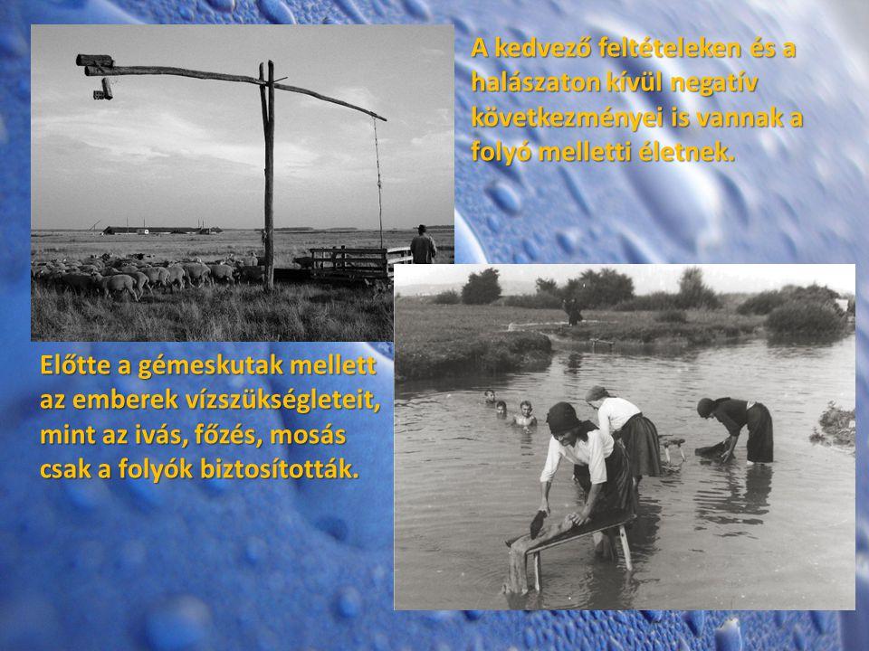 A kedvező feltételeken és a halászaton kívül negatív következményei is vannak a folyó melletti életnek.