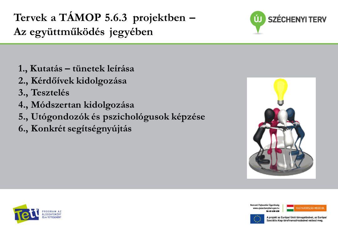 Tervek a TÁMOP 5.6.3 projektben – Az együttműködés jegyében