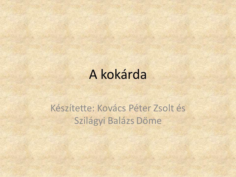 Készítette: Kovács Péter Zsolt és Szilágyi Balázs Döme