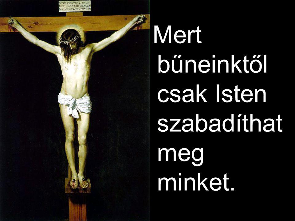 Mert bűneinktől csak Isten szabadíthat meg minket.