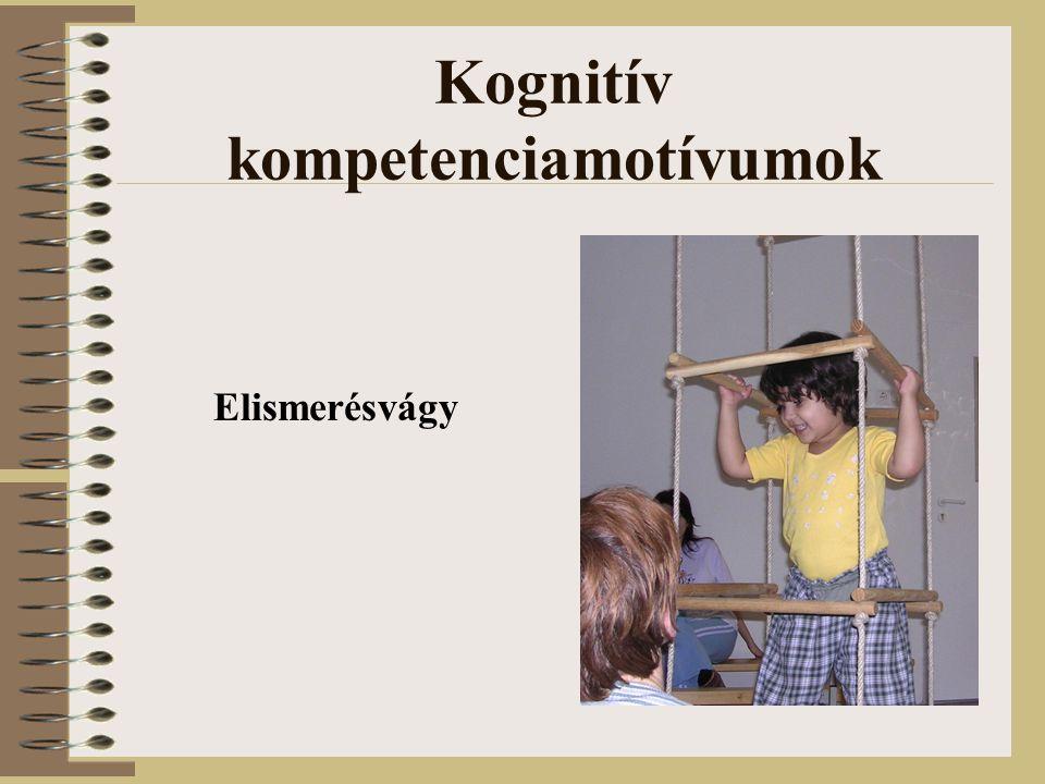 Kognitív kompetenciamotívumok