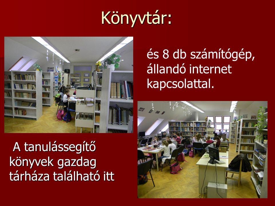 Könyvtár: és 8 db számítógép, állandó internet kapcsolattal.